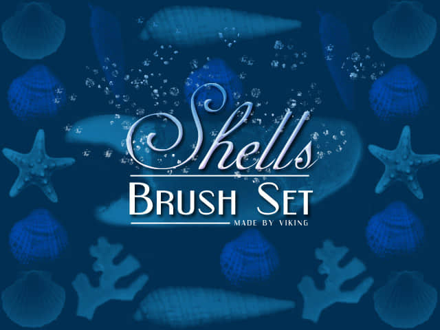Shells.brushes.by.viKING
