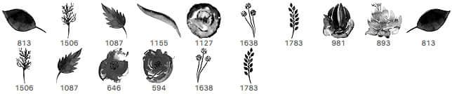水彩、水粉涂鸦植物鲜花、叶子图案Photoshop笔刷素材 植物花纹笔刷 叶子笔刷  photoshop brush plants brushes