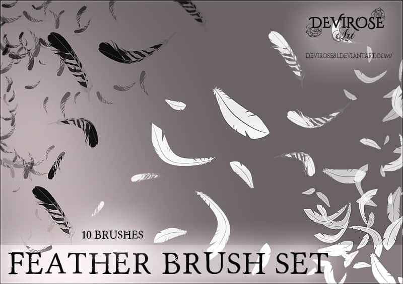feather_brushes_set_by_devirose81-d9y6o6a