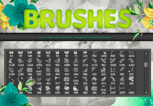 brushes____160__by_theimperfectgirl-d8o4a4r