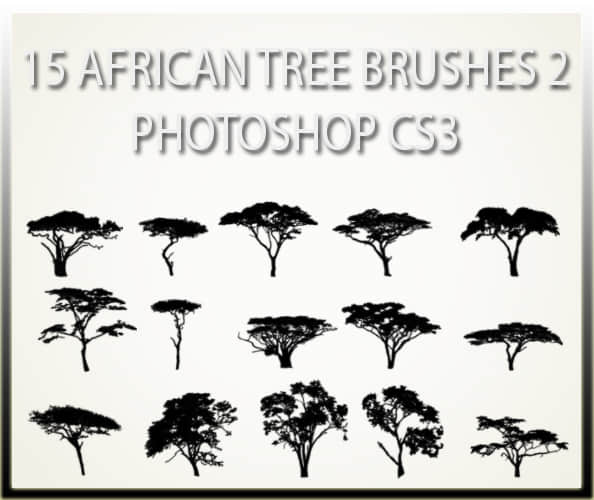 15_african_tree_brushes_2_cs3_by_charfade