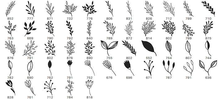 小清新手绘植物花纹图案PS笔刷素材下载 绿叶花纹笔刷 植物花纹笔刷 树枝花纹笔刷  flowers brushes