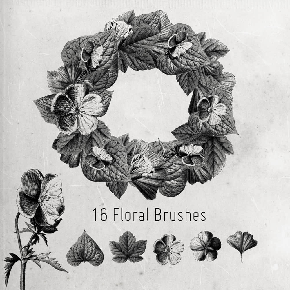 16种枫树、银杏、菩提树、海葵鲜花花圈PS笔刷素材 花圈笔刷  flowers brushes