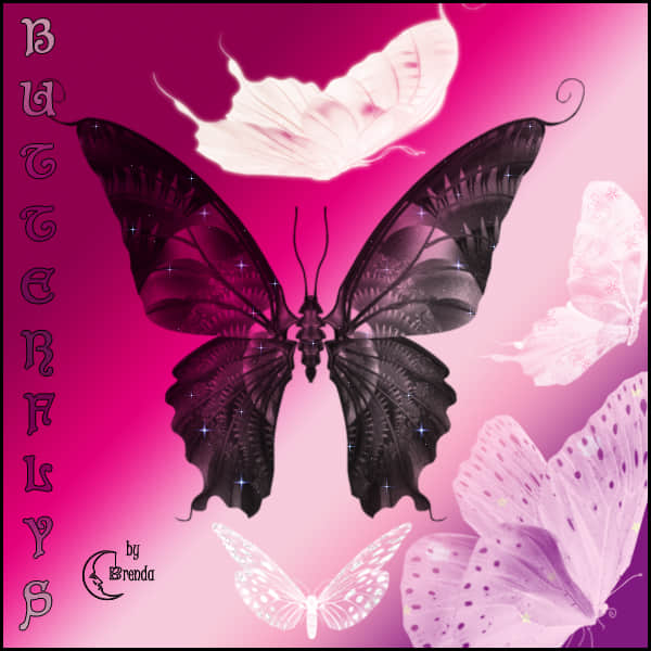 butterflys_photoshp_brushes_by_coby17