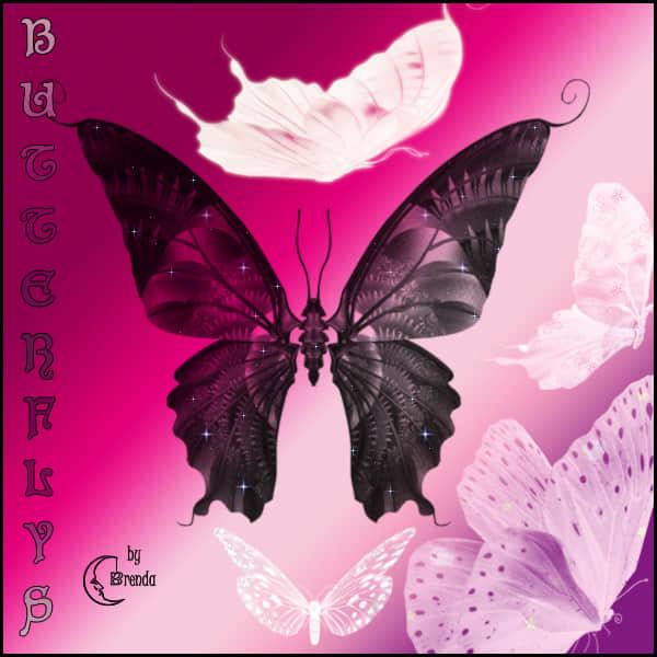 漂亮的魔幻蝴蝶图形Photoshop笔刷素材下载 魔幻笔刷 蝴蝶笔刷  insects brushes