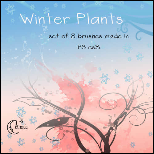 winter_plants_brushes_by_coby17