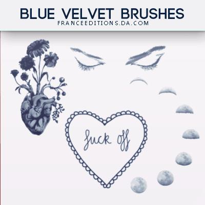 眼睛、月食、鲜花爱心等Photoshop照片美化笔刷 美图笔刷 照片装饰笔刷  adornment brushes