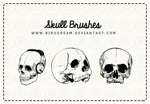 skull__abr_by_birddream-d86nuf1