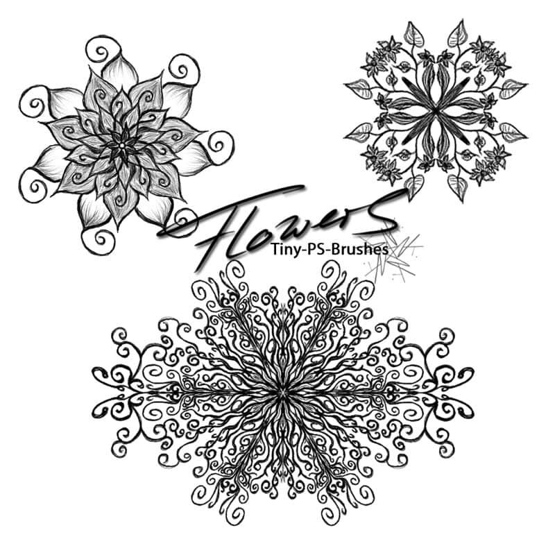 带有神秘宗教色彩的花纹图案Photoshop手绘花纹笔刷 手绘花纹笔刷 宗教花纹笔刷  flowers brushes