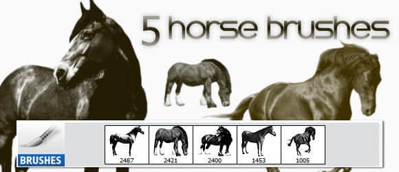5匹真实的骏马、马匹图形PS笔刷 骏马笔刷 马笔刷  %e5%8a%a8%e7%89%a9%e7%ac%94%e5%88%b7