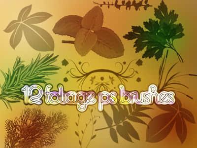 植物叶子、野草、杂草Photoshop笔刷素材下载 叶子笔刷  plants brushes