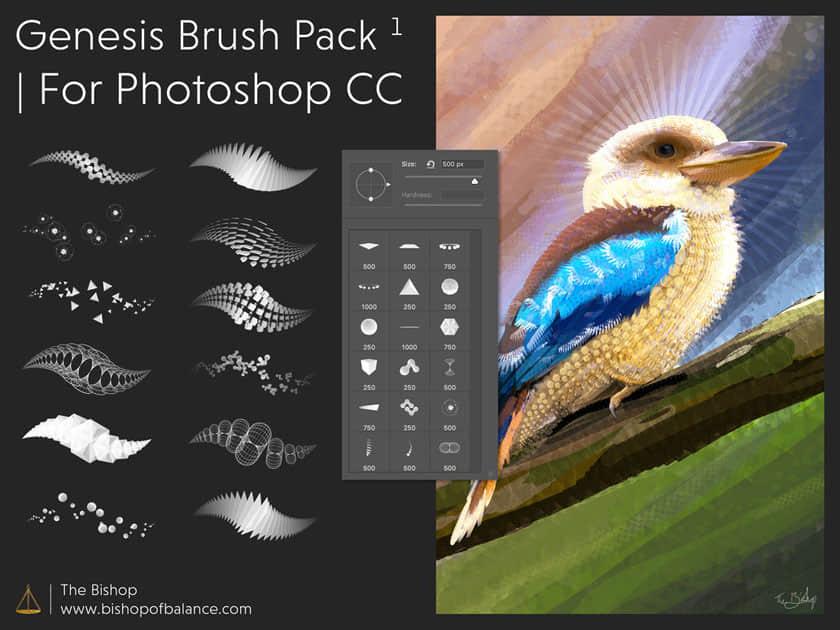 一副关于鸟的插画所需要的绘画笔刷PS素材包下载 绘画笔刷 插画笔刷 手绘笔触笔刷  photoshop brush