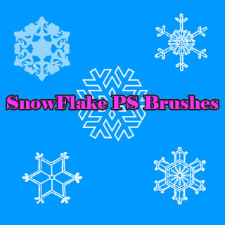 手绘雪花式花纹图案Photoshop笔刷素材下载 雪花笔刷 花纹笔刷  flowers brushes