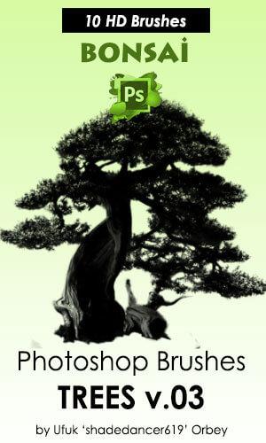盆景松树效果Photoshop笔刷素材 盆景笔刷 松树笔刷  plants brushes