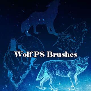 雪狼、野狼、狼头Photoshop动物笔刷素材