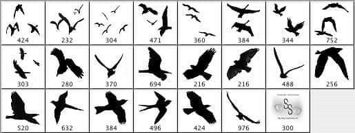 多种飞鸟笔刷
