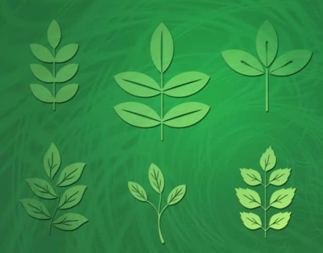 多种绿叶笔刷