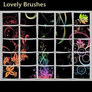 漂亮的花纹画笔笔刷