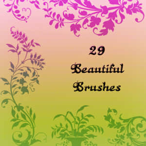 典雅华丽的花纹笔刷