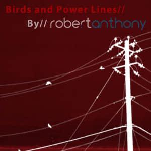 鸟与电线杆笔刷