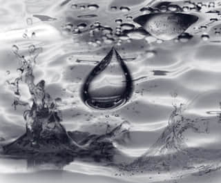 自然水滴笔刷