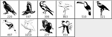 多种鸟类笔刷