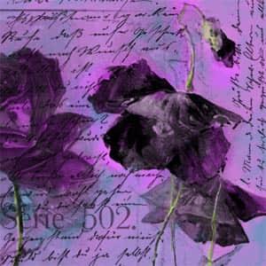 鲜花水果信纸笔刷