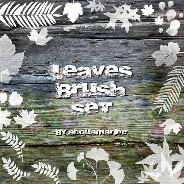 半透明的植物叶子笔刷 青草 草 植物 叶子  plants brushes
