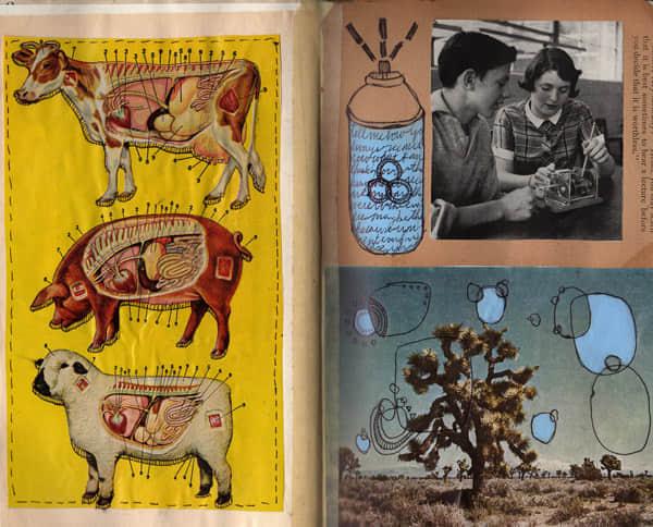 壮丽的30本Moleskine笔记簿艺术欣赏