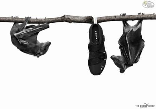 30张鞋类广告海报设计