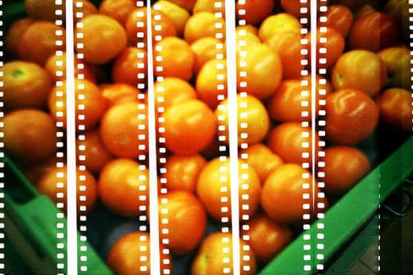 50张利用二次曝光拍摄技术拍摄的照片欣赏
