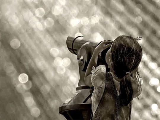 30张浅景深摄影照片欣赏 浅景深 摄影照片 摄影技术  photography