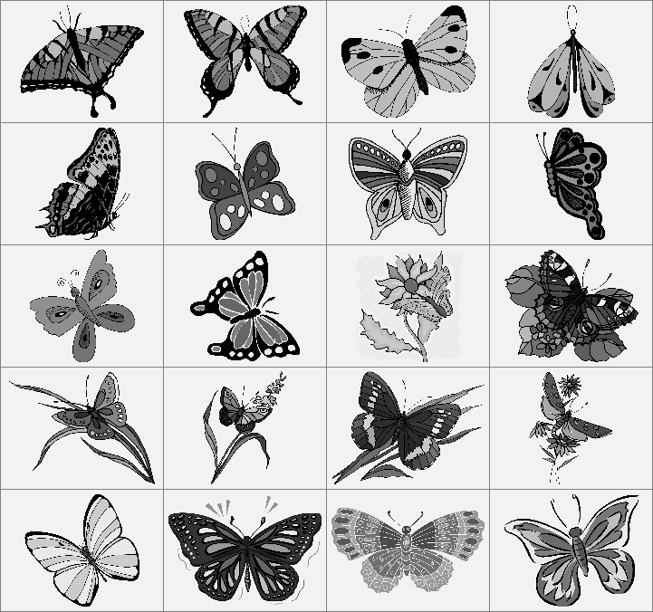 10种斑斓的蝴蝶造型笔刷