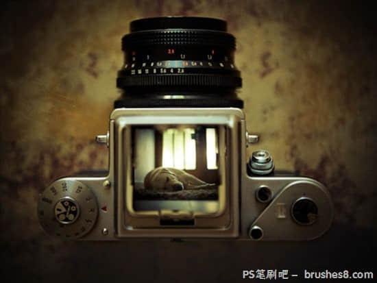27张精彩的静止物体摄影照片