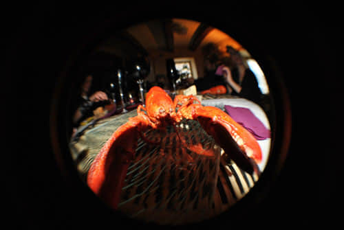 40张鱼眼镜头摄影作品
