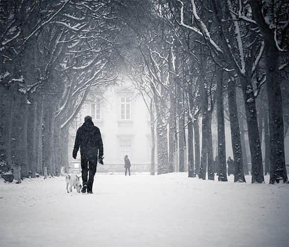 20张美丽的冬季摄影照片