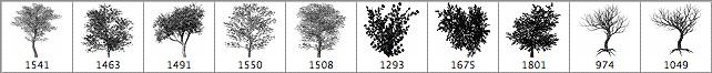 多种逼真高分辨率的树木笔刷