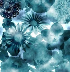 多种草本植物花卉笔刷
