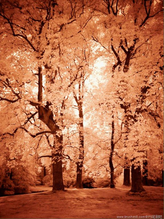 35张令人惊叹的红外线摄影拍照技术
