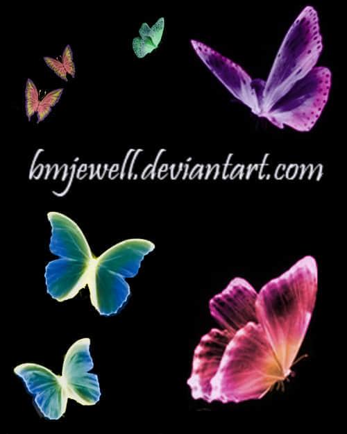 奇妙的彩色蝴蝶笔刷