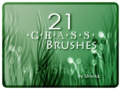 青青小草笔刷 青草笔刷 小草笔刷  plants brushes