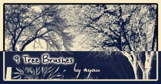 9种免费的树木笔刷下载 树林笔刷 树木笔刷  plants brushes