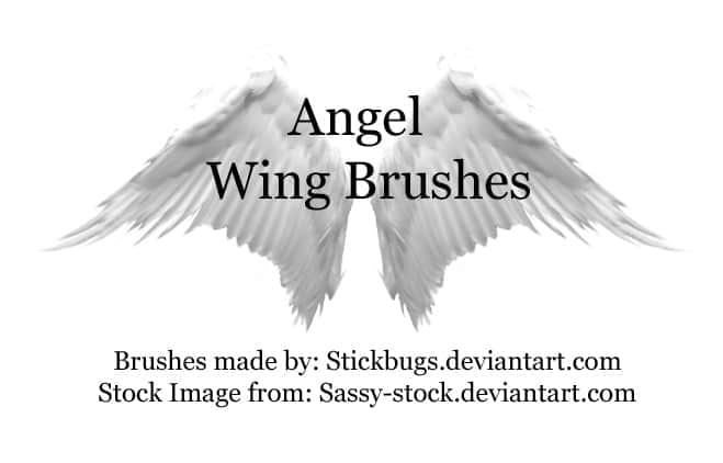 洁白的天使之翼笔刷