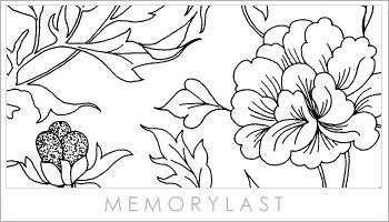 中国古典花朵笔刷