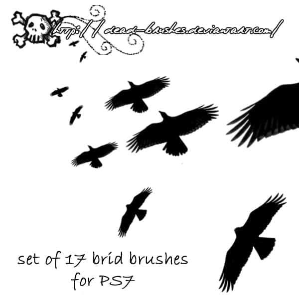 17种飞鸟姿态笔刷