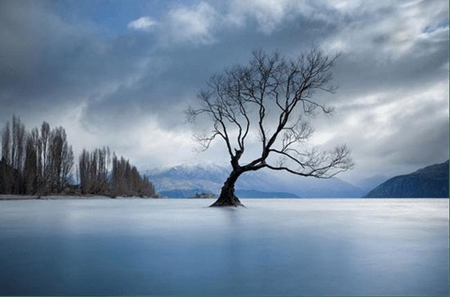 33张美丽的各色景物摄影照片