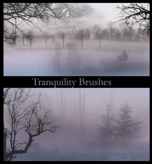 宁静的森林效果笔刷