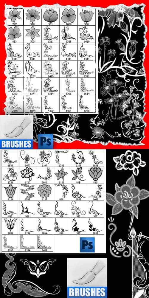 漂亮的手绘花纹花朵笔刷 花纹笔刷  flowers brushes
