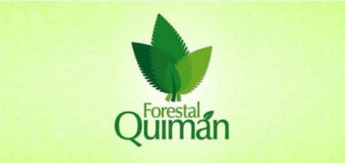 30个以绿叶设计为原型的Logo标志