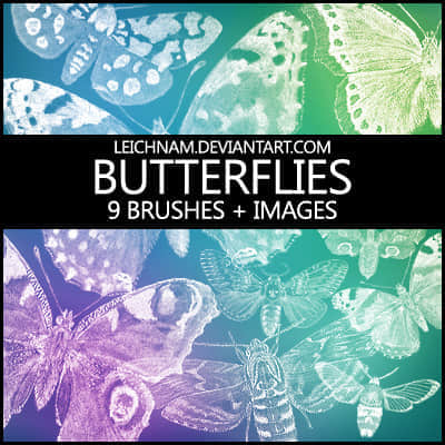 9种Photoshop蝴蝶样式笔刷